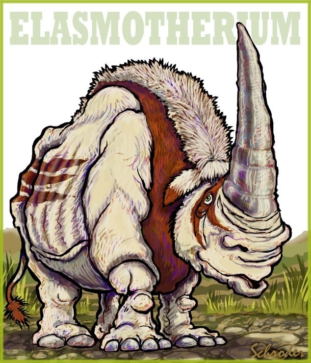 Elasmotherium 12-11